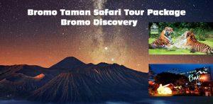 Mt Bromo Safari Park Prigen Tour