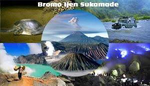 Bromo Ijen Sukamade Tour Package 4D3N